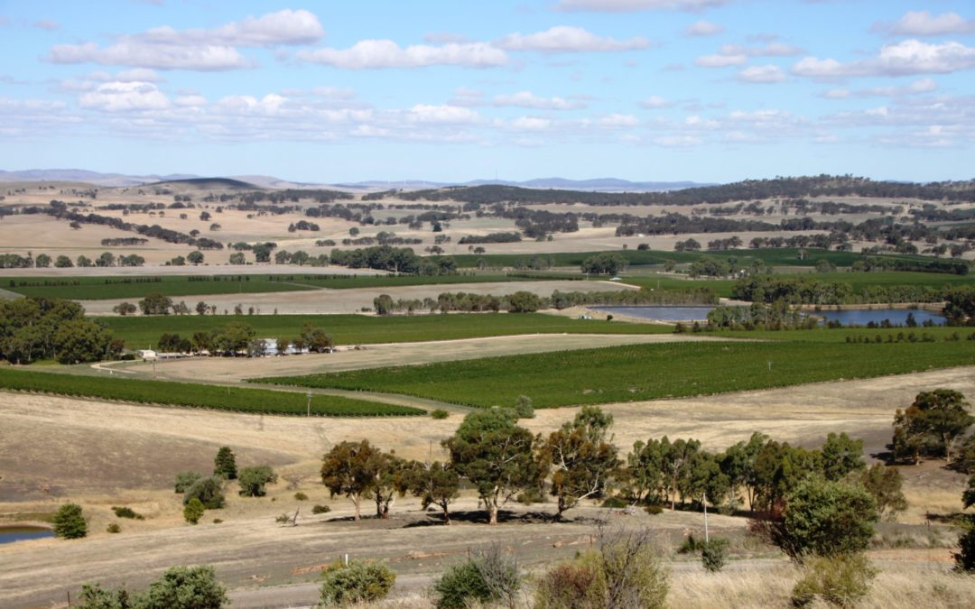 South Australia – Clare Valley